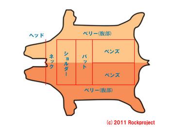 kawabui2.jpg